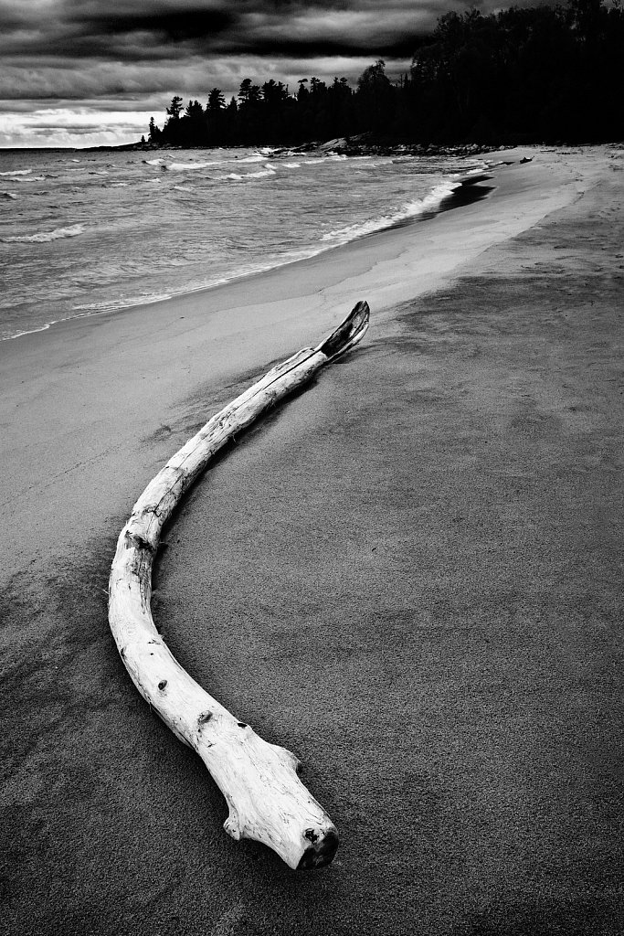 Driftwood, Lake Superior Provincial Park, Ontario, Canada
