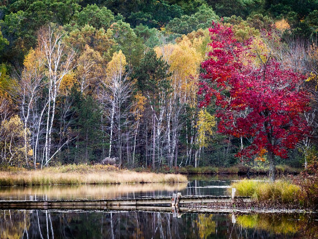 Fall on Left Foot Lake, Crivitz, Wisconsin